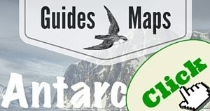 Antarctica Guide, National Parks Guy