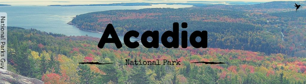 Acadia National Park, USA, National Parks Guy, Stories, Tales, Adventures, Wildlife