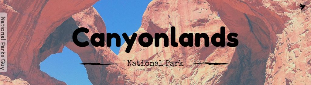 Canyonlands National Park, USA, National Parks Guy, Stories, Tales, Adventures, Wildlife