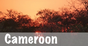Cameroon National Parks