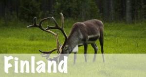Finland National Parks