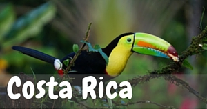 Costa Rica, National Parks Guy