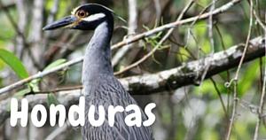 Honduras, National Parks Guy