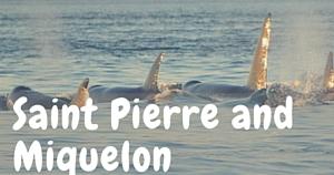 Saint Pierre and Miquelon, National Parks Guy