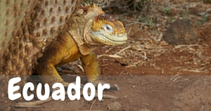 Ecuador, National Parks Guy