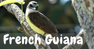 French Guiana, National Parks Guy